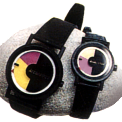 The bicolor watch